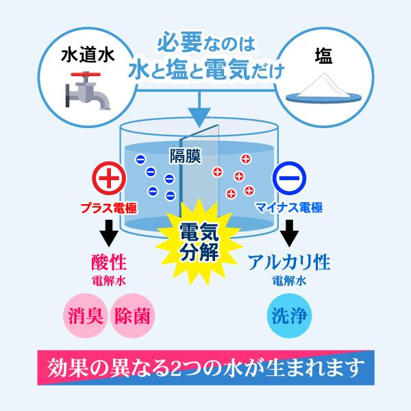 水 ウイルス 電解